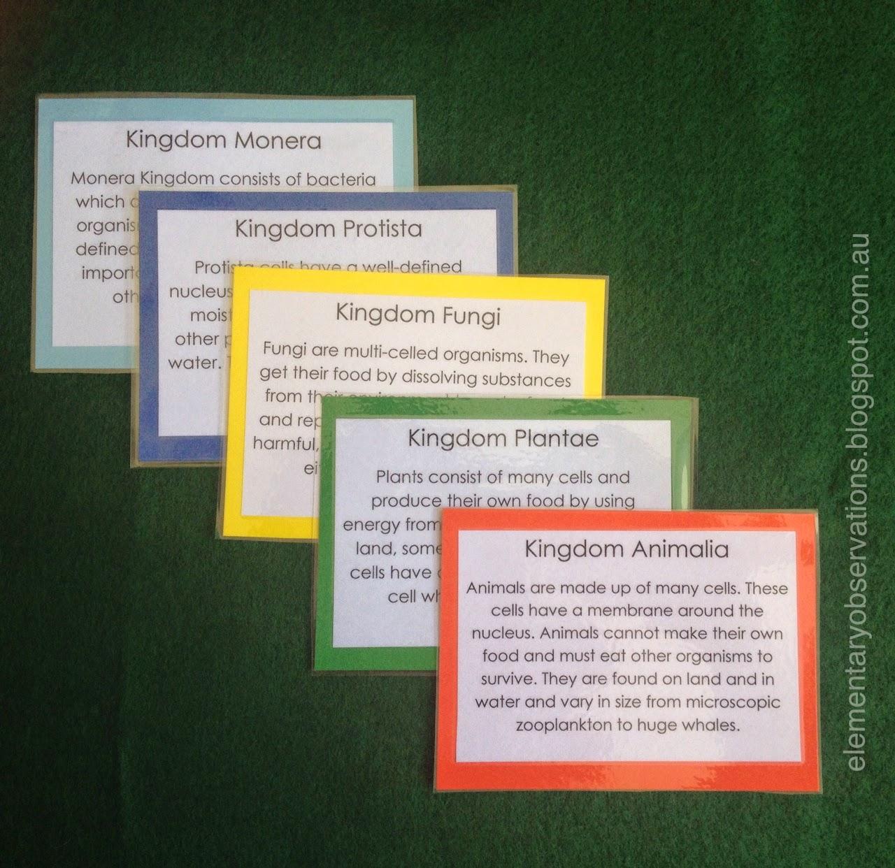 Elementary Observations Five Kingdoms