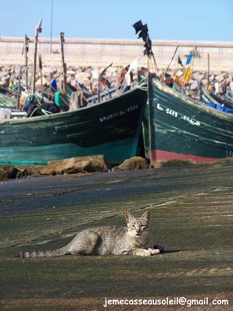 Port de pêche de Sidi Ifni