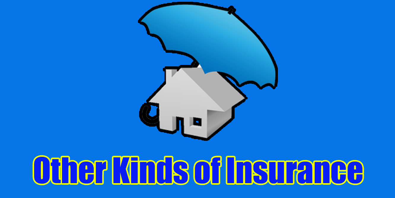 Other Kinds of Insurance