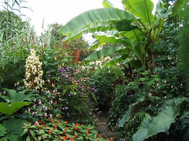 tropical%2Bgarden.jpg