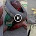ALLAHU.. KEJAM!! VIDEO: PALING NGERI ! Budak 7 Tahun Dibakar Hidup² Hanya Kerana Kesalah Yg Tak Masuk Akal !