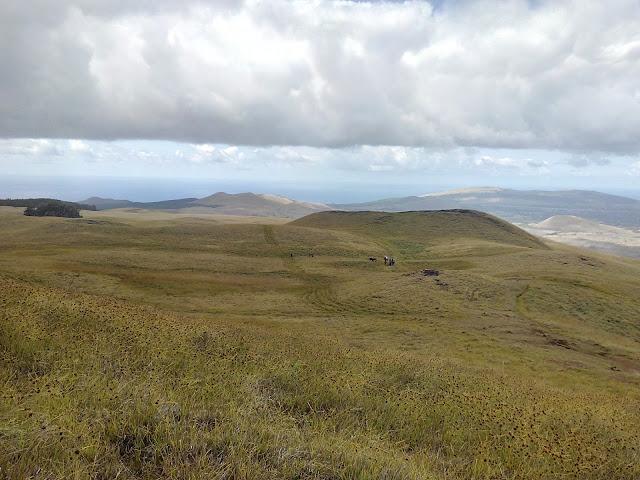 Maunga Terevaka, Isla de Pascua