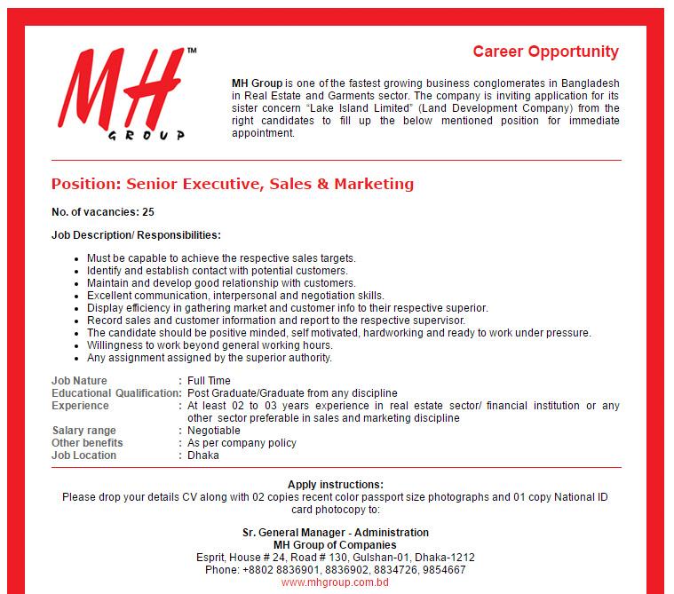 MH Group of Companies - Senior Executive, Sales & Marketing - Job ...