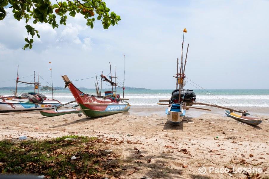 Fotografías de Sri Lanka