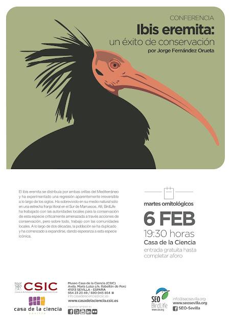 Conferencia: Ibis eremita, un éxito de conservación. Por Jorge Fernández Orueta, 6 de Febrero 2018. Grupo Local SEO-Sevilla.
