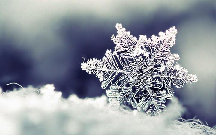 kar tanesi fotoğrafı kış resimleri arasında