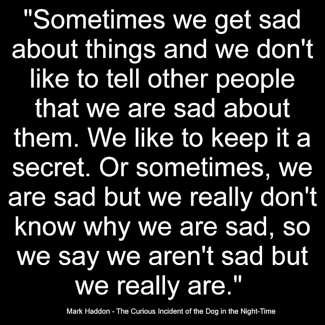 Sometimes we get sad about things and we don´t like to tell other people that we are sad about them. We like to keep it a secret. Or sometimes, we are sad but we really don´t know why we are sad, so we say we aren´t sad but we really are. - Mark Haddon, The curious Incident of the Dog in the Night-Time
