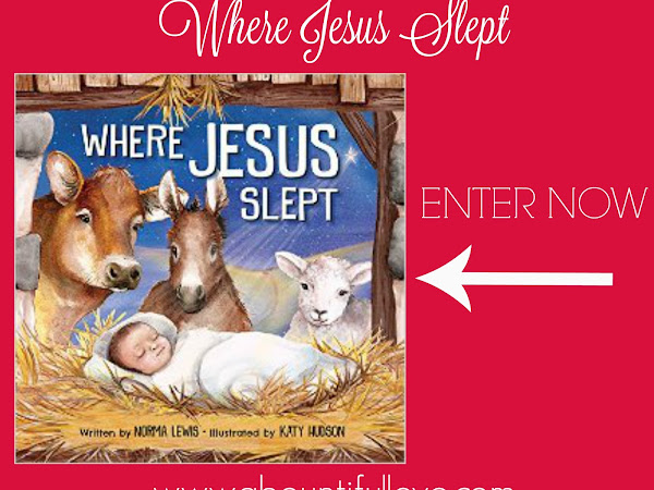 Giveaway : Where Jesus Slept?