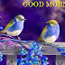 Good Morning Wishes Messages For Sister With Pictures