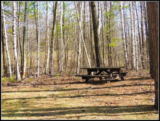Zona de Picnic del Monadnock State Park (NH)