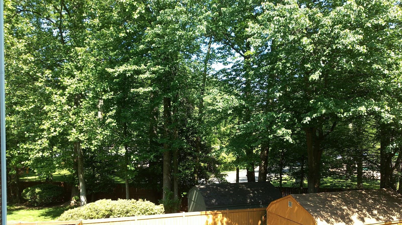 Avonturen vanuit ons hoekje van de wereld genieten van het zomerse weer - Thuis opslag bench wereld ...