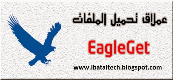 download eagleget