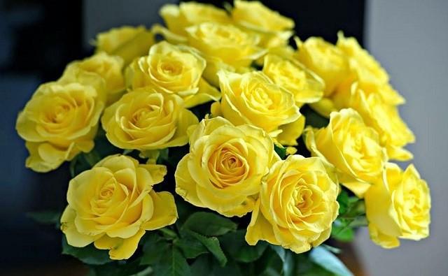 hoa sinh nhat dep nhat 2