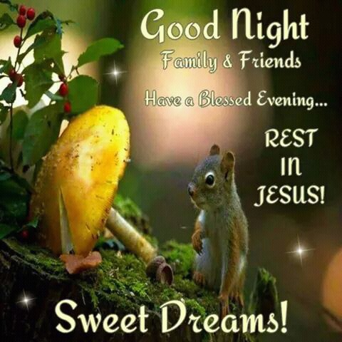 images of good night wishes to friends