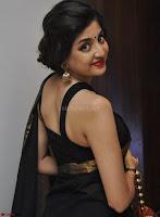 Poonam Kaur Saree New Pics 009.jpg