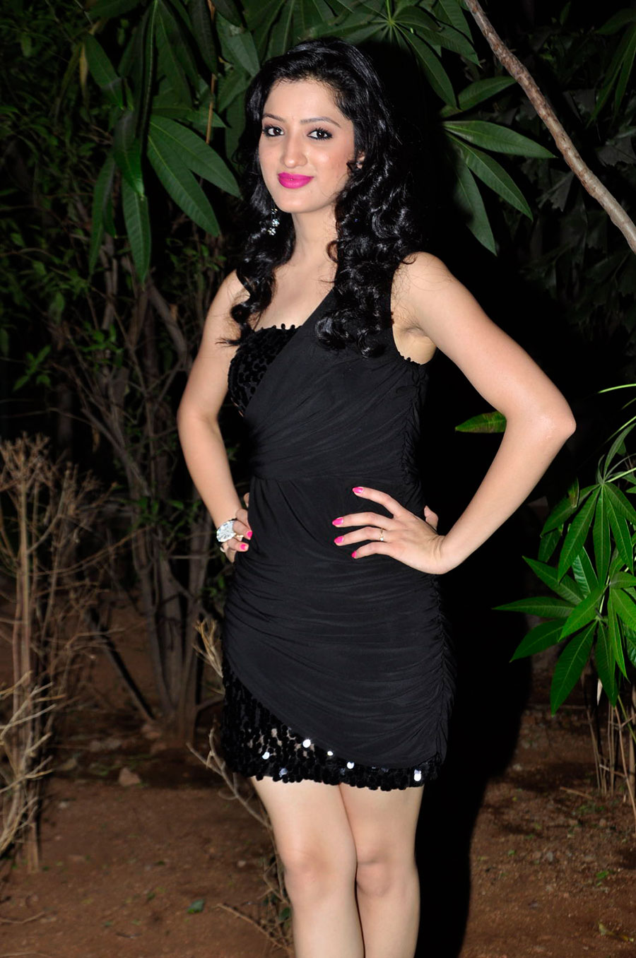 hot Glamorous richa panai new hot photo gallery