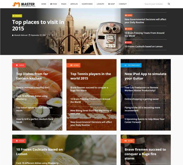 Master super professional theme for problogging
