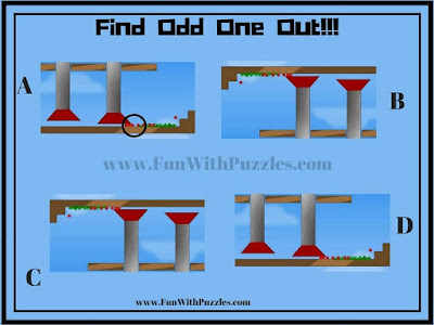 Odd One Out Picture Puzzle Answer