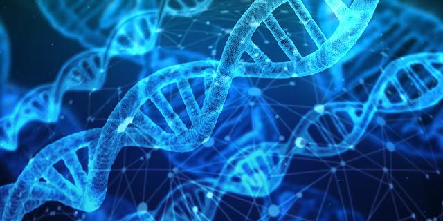 Gambar DNA