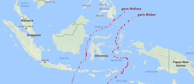 Persebaran Flora Fauna Indonesia