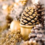 http://www.maitaispicturebook.com/2013/12/christmas-recap.html
