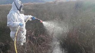 Ξεκίνησε το Πρόγραμμα Καταπολέμησης Κουνουπιών της ΠΕ Ανατολικής Αττικής