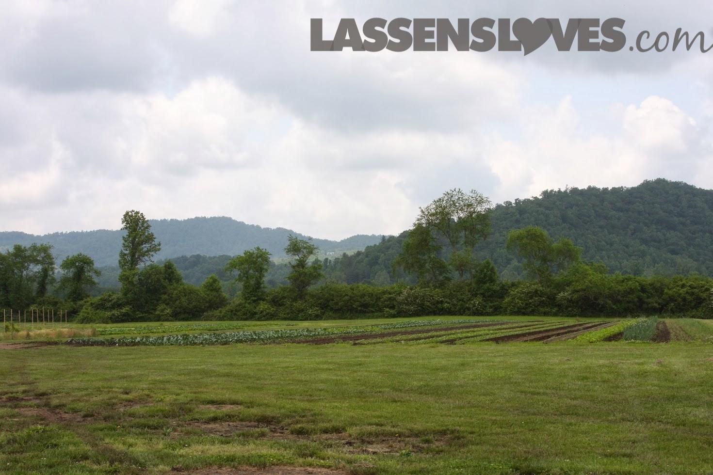 lassensloves.com, Lassen's, Lassens, Gaia+Herbs