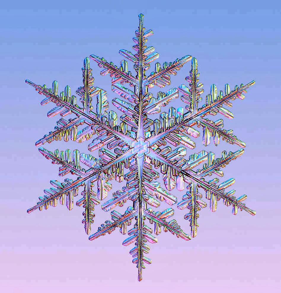snowflake - photo #15
