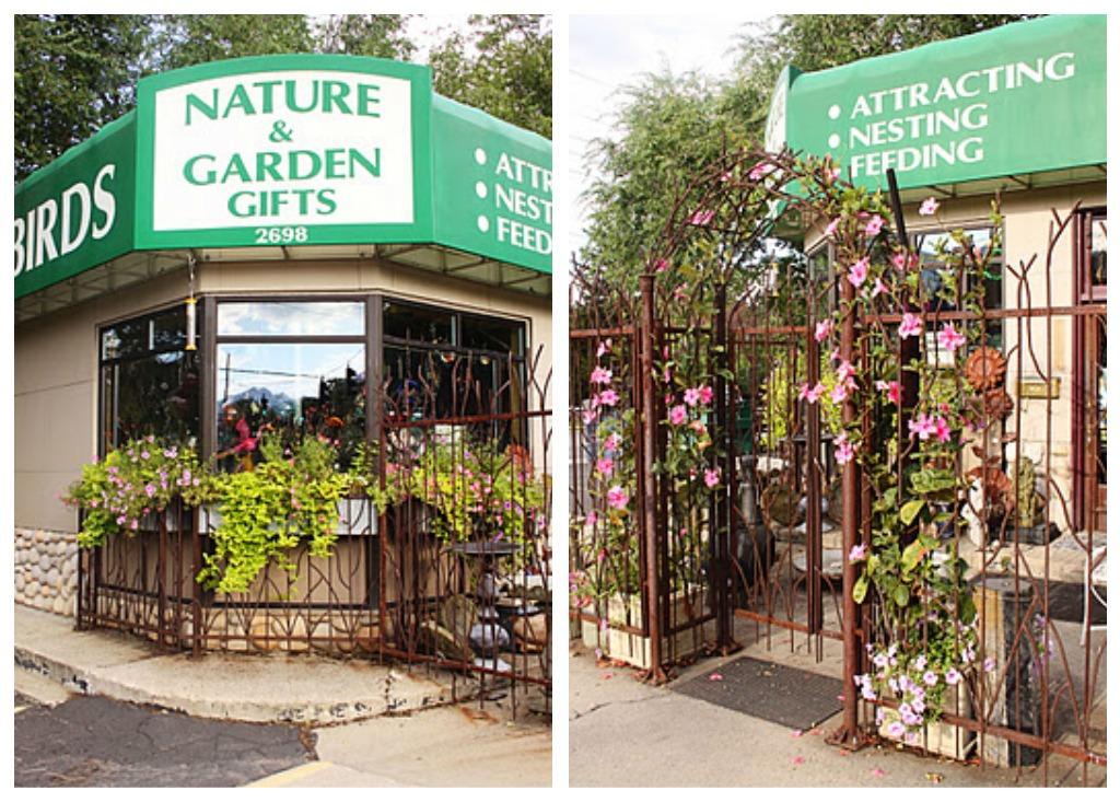 I Heart Salt Lake: Backyard Birds and Gardens