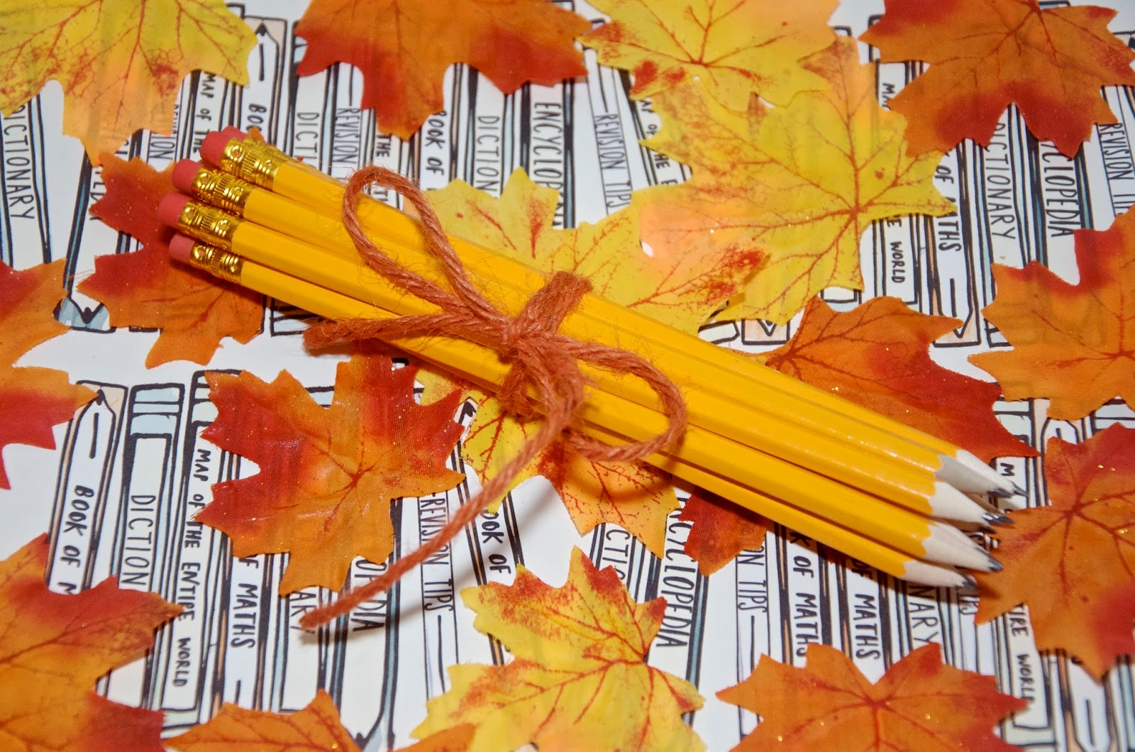 Pencils & leaves