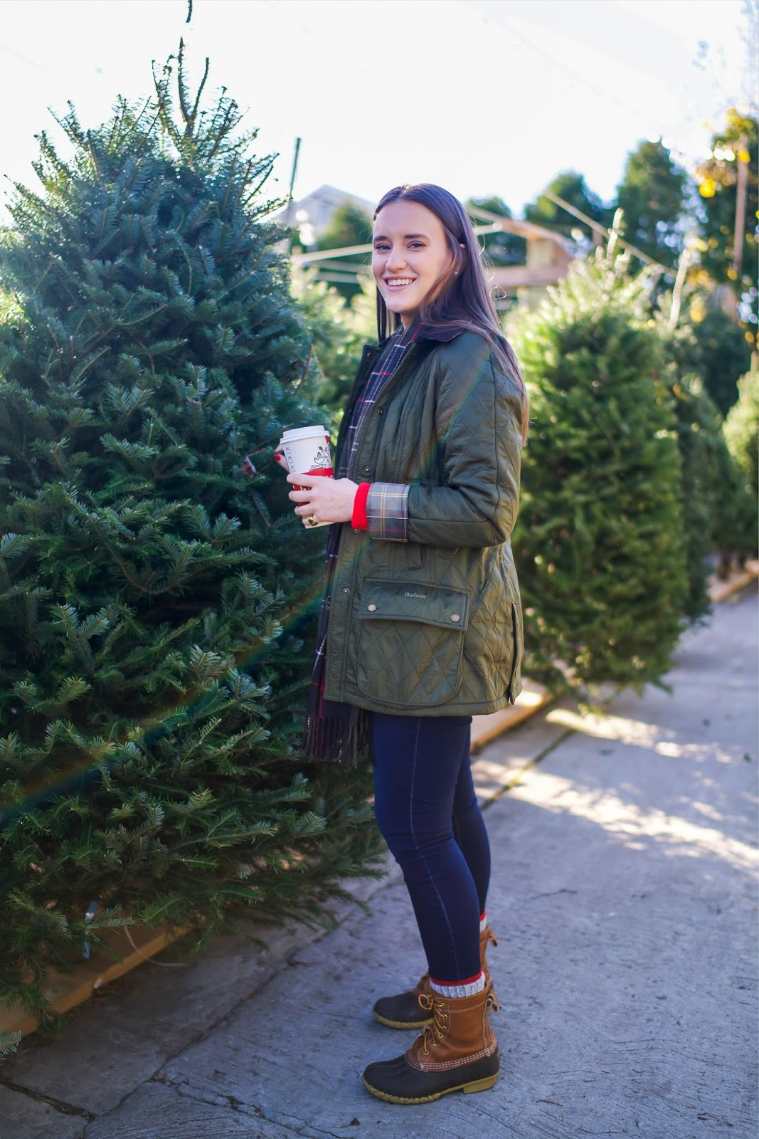 new barbour   christmas tree shopping