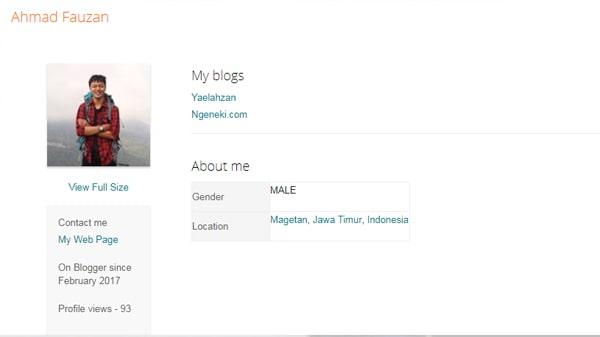 halaman profil blogger