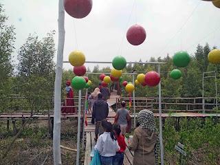 Mempawah Mangrove Park 3