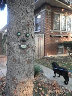 Halloween america albero