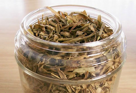 Dried Tarragon Leaves