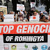 Hundreds of UK protesters in London urge end to Myanmar's 'genocide' of Rohingya