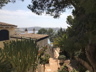 cacti, plants, rooftops and the sea in mallorca