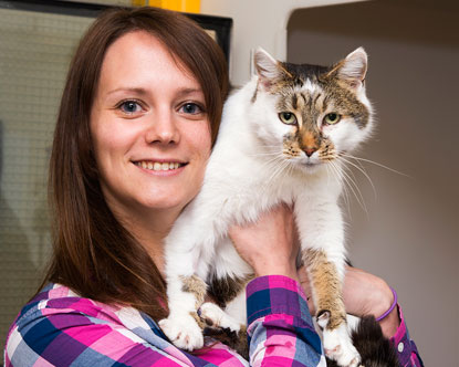 Cat Chloe reunited with her owner after being scanned for a microchip