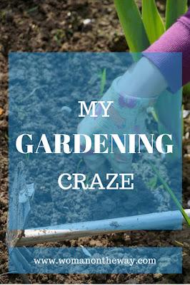 My Gardening Craze