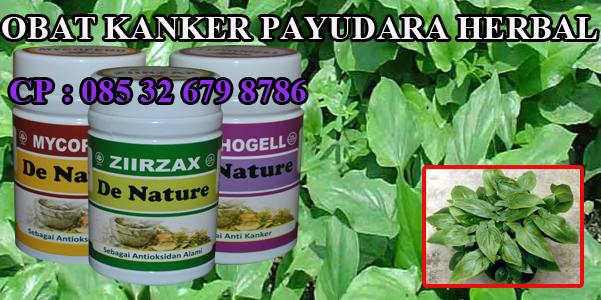 Foto Terapi Obat Herbal kanker Payudara