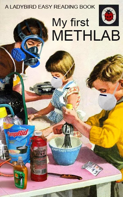 Funny My First Methlab Book - A ladybird easy reading childrens book