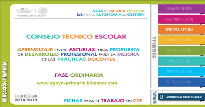 Fichas para el Trabajo en Consejo Técnico Escolar para primaria | Tercera Sesión