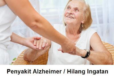 Penyakit Alzheimer : mengobati gejala penyakit hilang ingatan, pelupa, pikun, mudah lupa, penyakit demensia