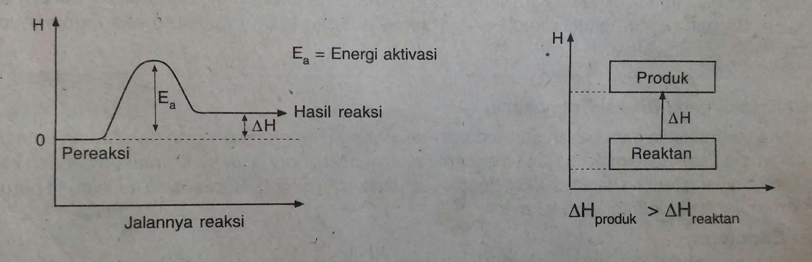 Sistem lingkungan energi dalam entalpi dan reaksi termokimia diagram tingkat energinya ccuart Gallery
