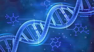 Komposisi Kimia dan Rantai DNA