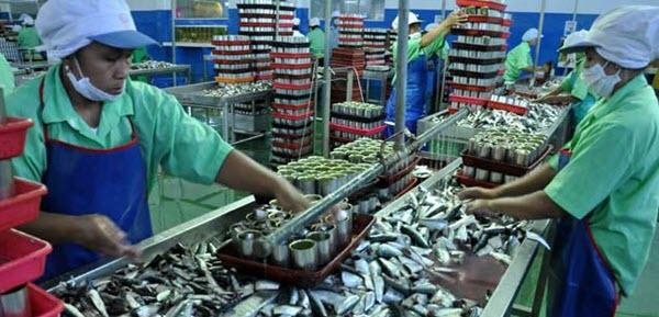 Pengalengan Ikan