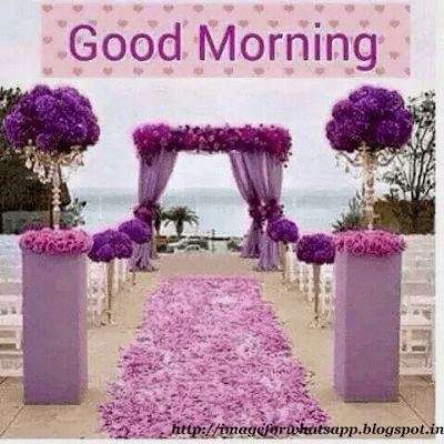 Wel Come Good Morning with Flowers Messages for Whatsapp