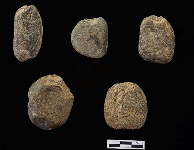 World's oldest fishing net sinkers found in S. Korea