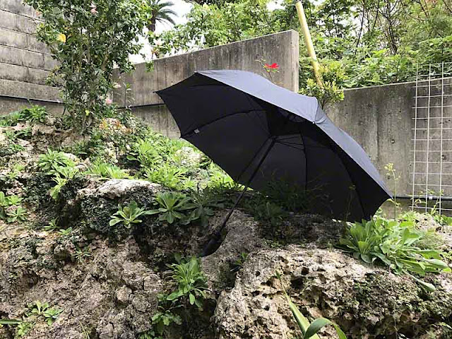 Windjammer Umbrella in a rock garden,Okinawa