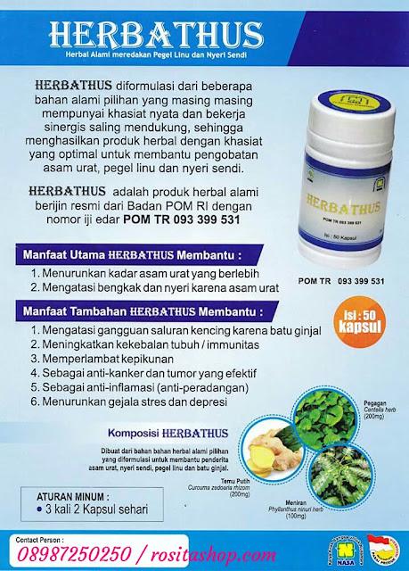 herbal asam urat alami